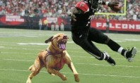 Hide Your Dawgs– Michael Vick's Outta Jail