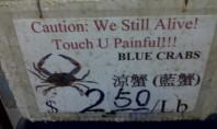 Oh Chinatown…