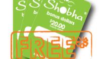 Shobha Gifting Guide
