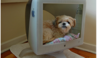 Adapt Your Old Computer Into a Dog Bed For GB's of Fun.