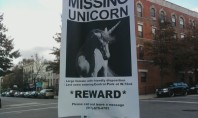 Did Anyone Spot a Unicorn in Central Park?