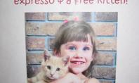 Kaffeine & Kids & Kitties!