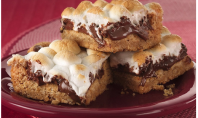 YUM ALERT: Warm Toasted S'Mores Bars