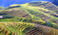 Travel Spotting: Longsheng Rice Terraces