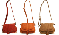 Purse Spotting: Baciami Saddle Bag