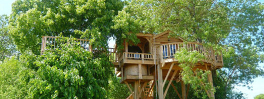 Travel Spotting: A Tree House for Grown-ups