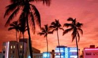 Travel Spotting: Top 5 Sight-Seeing Spots in Miami