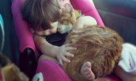 Cat Cuddles Toddler Photo of the Day