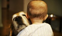 Cute Spotting: Dog Hugging a Baby!