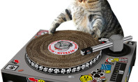 Awesome Spotting: DJ Cat Scratch Turntable