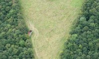 heart shaped meadow travel