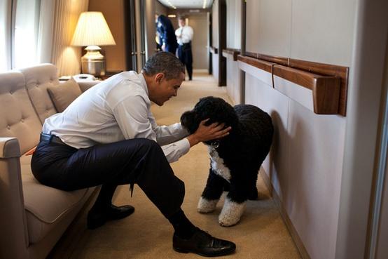 Obama and Bo