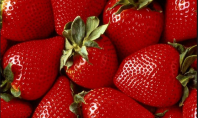 Top Five Strawberries on Etsy