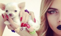 cara & puppy