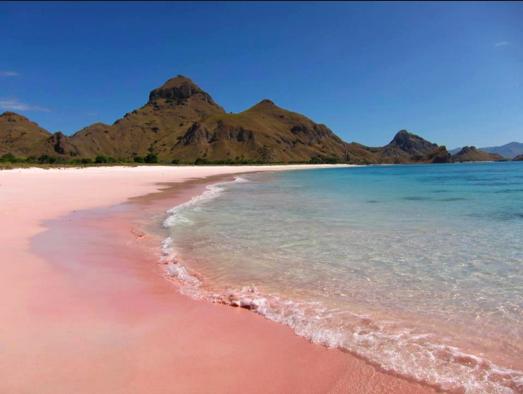 Pink Beach, Komodo National Park – Indonesia