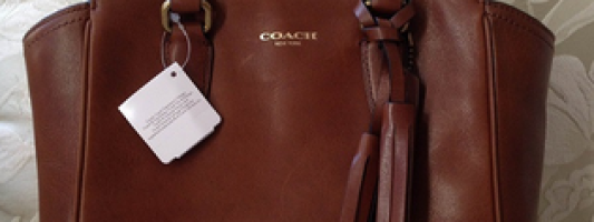 Accessories Spotting: Coach Mini Tanner Studded Handbag