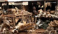 Akodowessa Fetish Market