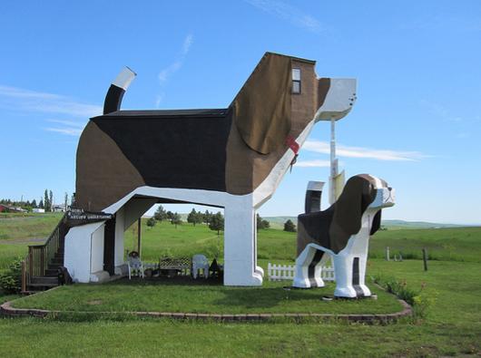 animal shaped buldings