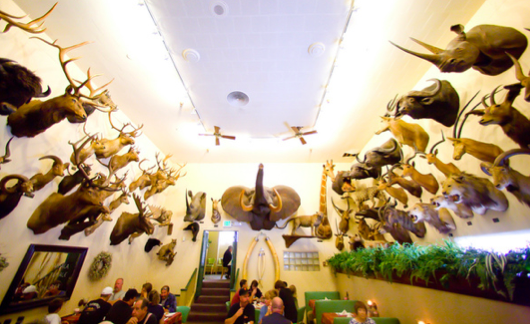 Fosters big horn restaurant