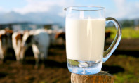 Could Raw Milk Be the Best Milk?