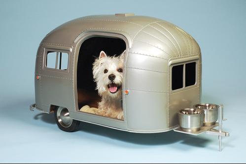 puppy trailer