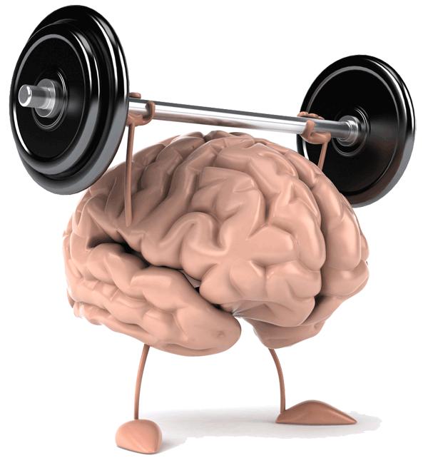 http://www.theluxuryspot.com/wp-content/uploads/2014/02/brainPower.png