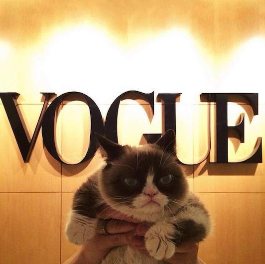 Grumpy Cat Birthday Youtube: Grumpy Cat Went To Vogue