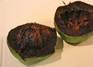 black sapote