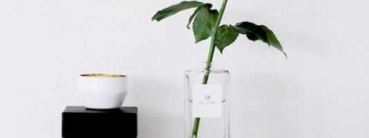 DIY: 5 Creative Vase Ideas