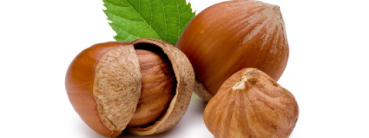 10 Health Benefits of Hazelnuts