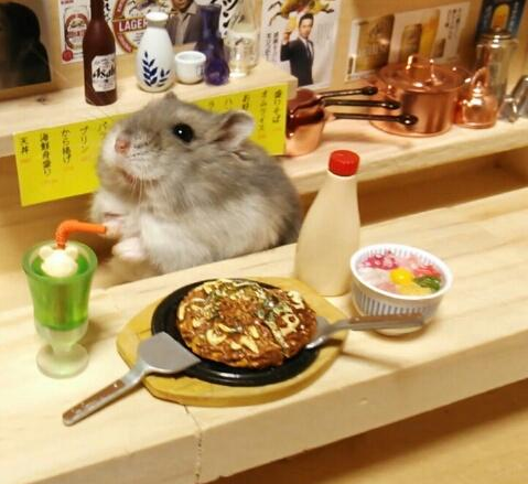 The Japanese Hamster Bartender - Hamster bartenders cutest thing youve ever seen
