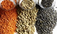 8 Health Benefits of Lentils