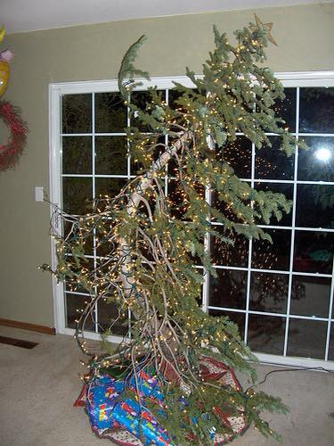 Pretty Christmas Trees Decorated
