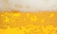10 Health Benefits of Beer