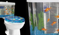 Fish Tank Toilet: It's a thing