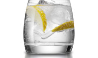 8 Health Benefits of Gin