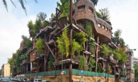 Tree House Apartments