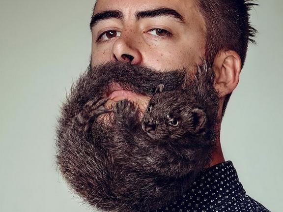 beard bacteria