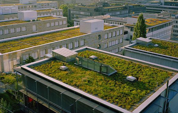 green rooftops in france