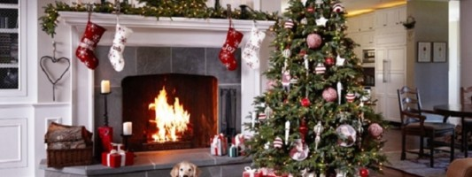 Free Christmas Tree and Blowout for a NYC Do-Gooder