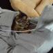 mewgaroo pet hoodie