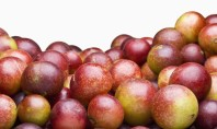 9 Health Benefits of Camu Camu Berries