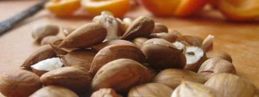 5 Health Benefits of Apricot Seed Kernels