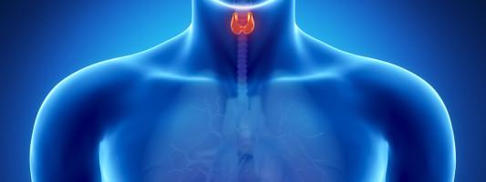 14 Symptoms of Thyroid Problems
