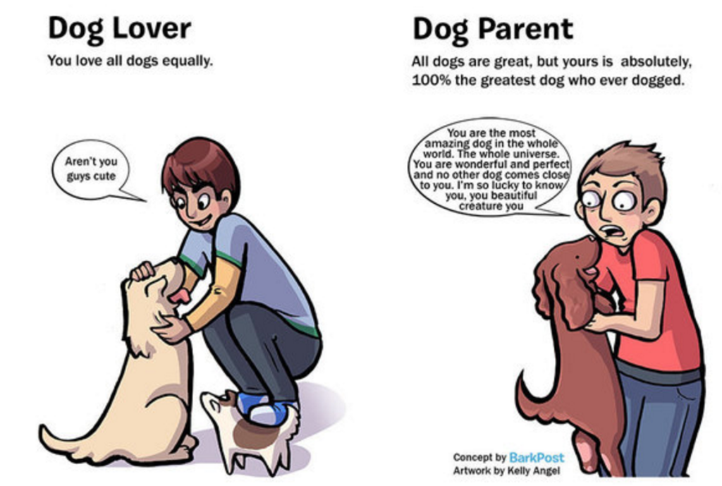 dog lovers