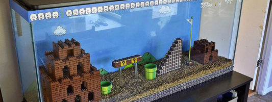 super mario bros fish tank