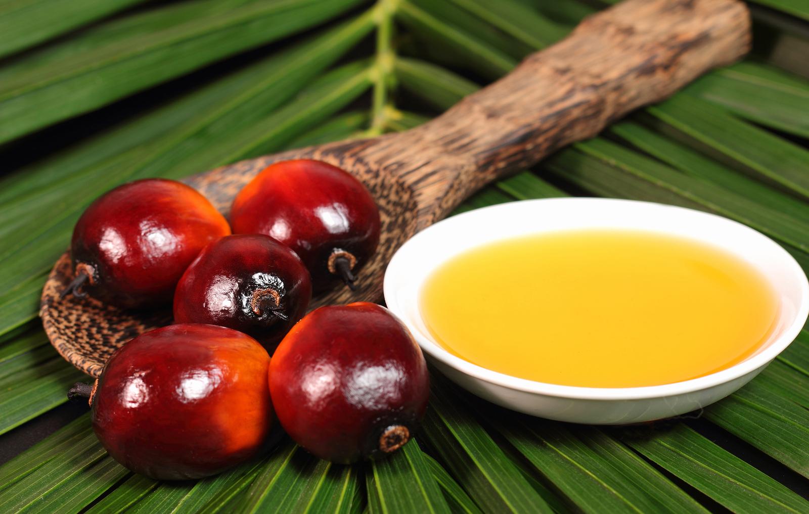 palm fruit oil healthy canistel fruit