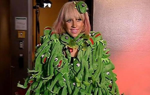gaga wearing kermit